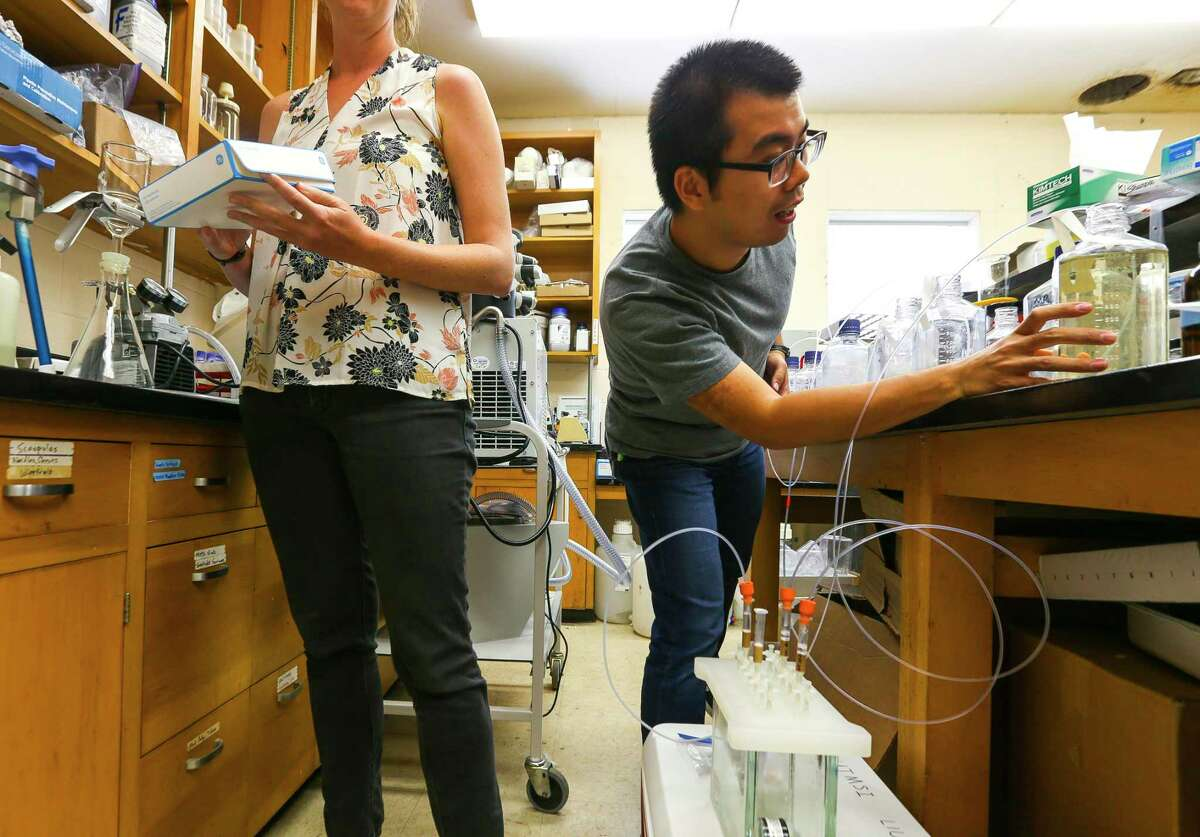 Researchers shared space in labs as they wait to move into newly completed lab space at The University of Texas Marine Science Institute in September 2018.