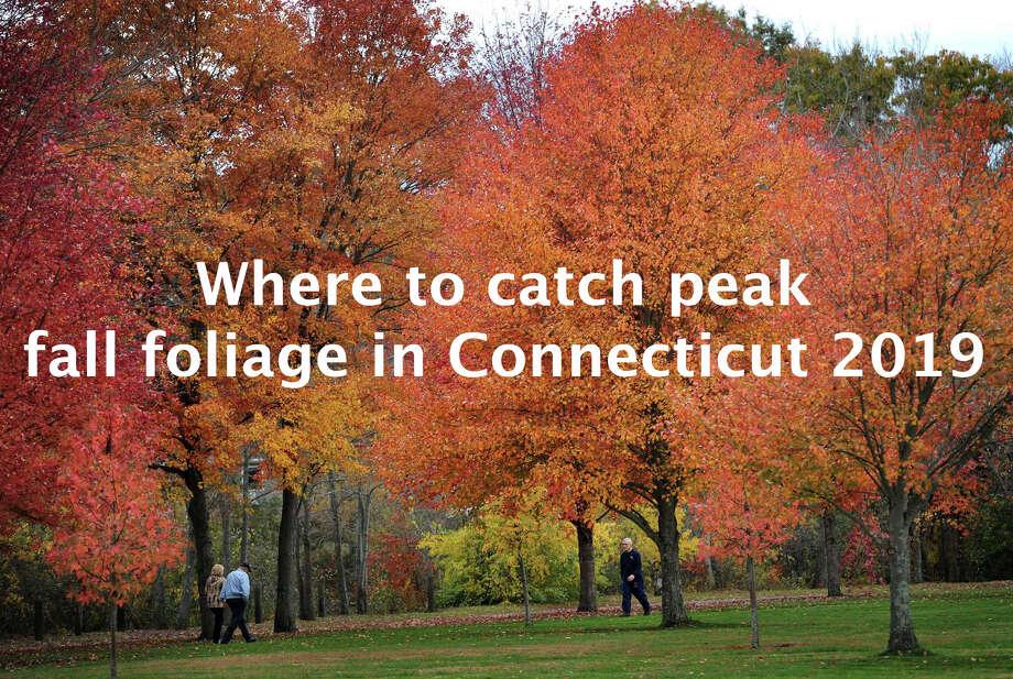 Photo: Brian A. Pounds  / Connecticut Post