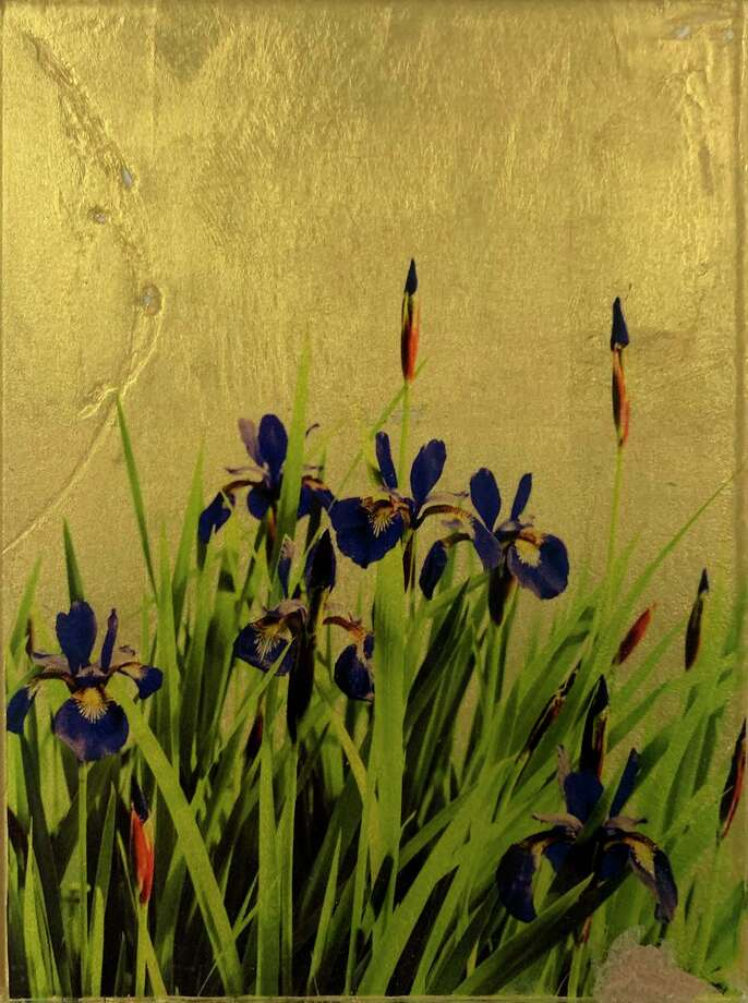 "The David M. Hunt Library presents John Atchley's fine photography exhibition, Tales from the Golden Age & Other Stories, featuring new works incorporating a gold leaf printing technique developed by the artist. Pictured is ""Iris."" Photo: Contributed Photo /"