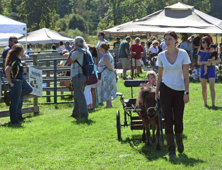 Sunny Valley Preserve in New Milford will play host to the 26th Open Farm Day Saturday. Photo: Deborah Rose / Hearst Connecticut Media / The News-Times  / Spectrum