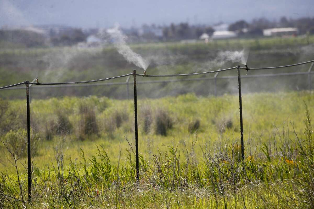 A drip line at the Newby Island Resource Recovery Park near the Newby Island Landfill is seen in Milpitas, Calif., on Tuesday, March 12, 2019. The state Air Resources Board is doing a study of odors in the area.