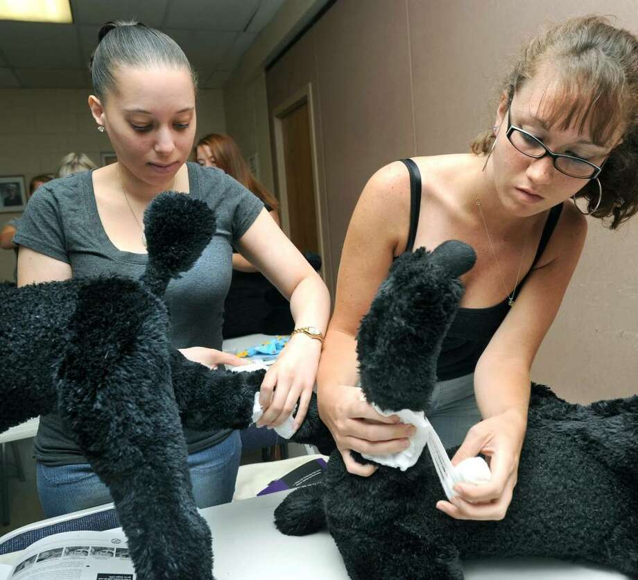 Jennifer Gutierrez, left, of Manhattan, and Jackie Buckley of New Fairfield practice pressure bandaging, a technique used for bleeding injuries such as cuts and scrapes, during a pet first aid class in Ridgefield Sunday, August 1, 2010. Photo: Carol Kaliff / The News-Times
