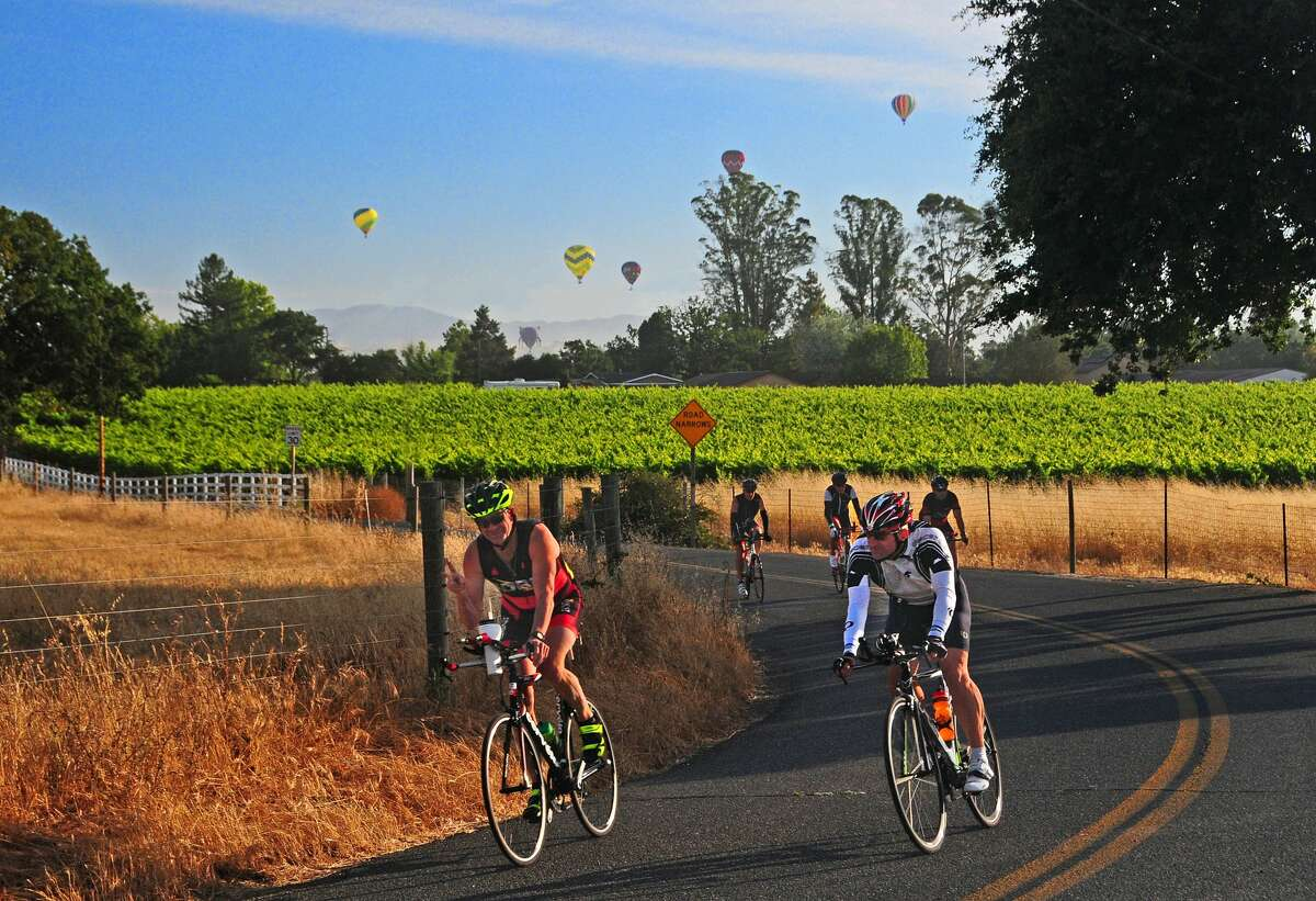 Planning a trip to Wine Country? Click through the gallery to see recommendations from locals for places to eat and things to do in Sonoma County.  Bike riding on West Dry Creek Road near Healdsburg, CA