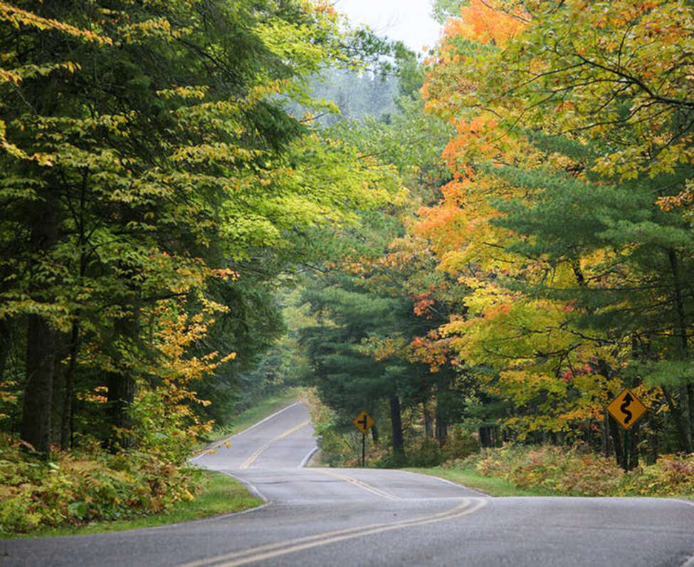 The road through Itasca State Park near Park Rapids, Minn. (Star Tribune file photo/Minneapolis Star Tribune/TNS)