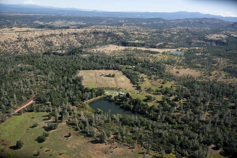 Rural Shasta County has seen an uptick in COVID-19 cases in June. Photo: Anton L. Delgado, Associated Press
