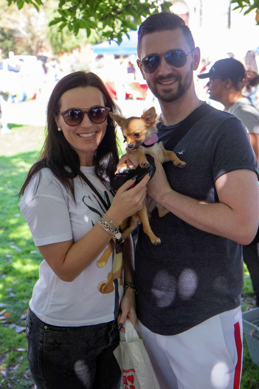 Stamford's annual Bark in the Park took place at Latham Park on September 22, 2019. The event featured all kinds of activities geared toward dogs and the people who love them. Were you SEEN?