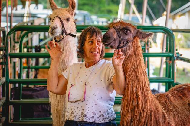 North Stonington Agricultural Fair, North Stonington The North Stonington Agricultural Fair kicks off the Connecticut festival season all weekend long. Find out more. Photo: Lisa Nichols Hearst CT Media