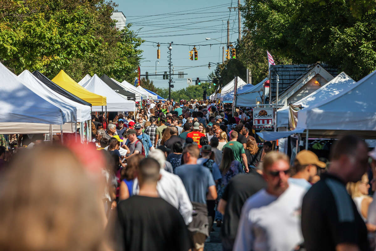 Were you Seen at the 38th annual LarkFest in Albany on Sept. 21, 2019?