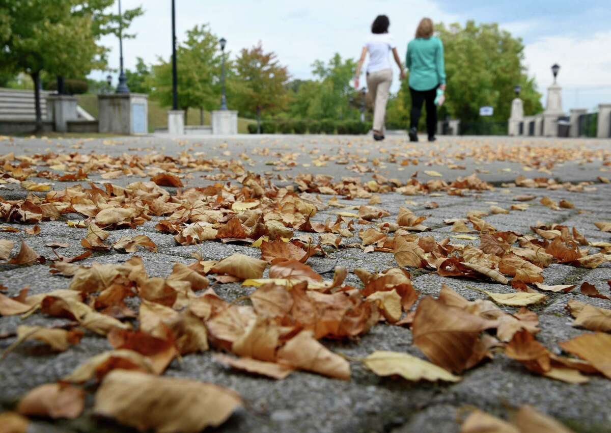 Autumn leaves littler the ground on the first day of fall at Jennings Landing on Monday, Sept. 23, 2019, in Albany, N.Y. (Will Waldron/Times Union)