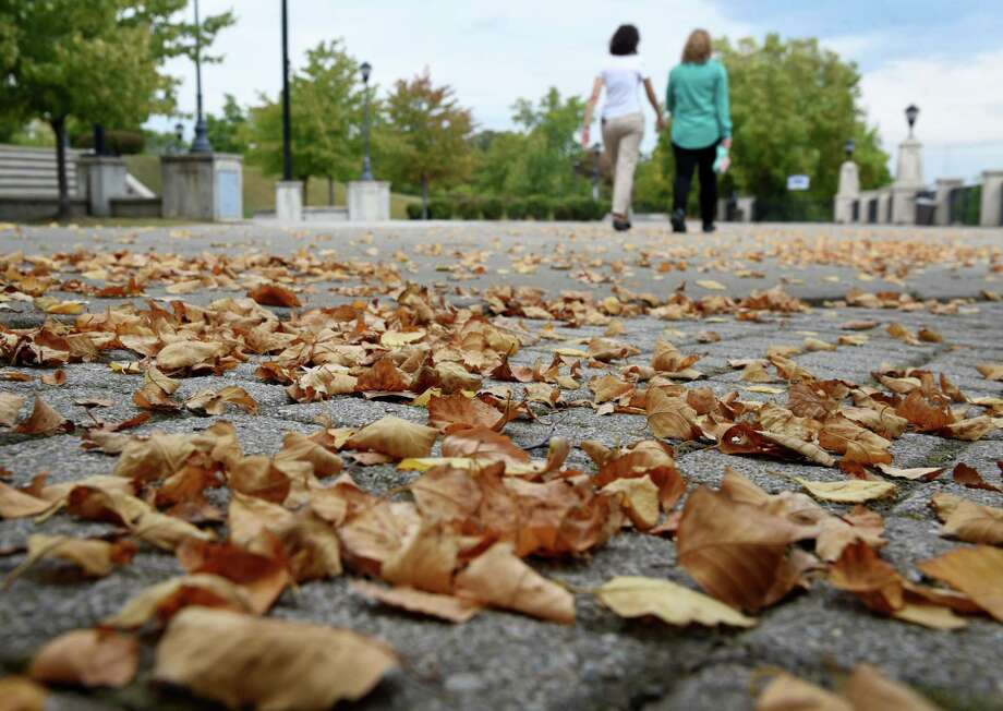 Autumn leaves littler the ground on the first day of fall at Jennings Landing on Monday, Sept. 23, 2019, in Albany, N.Y.  (Will Waldron/Times Union) Photo: Will Waldron, Albany Times Union