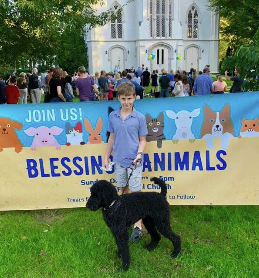 "A ""Blessing of the Animals"" event will take place on the lawn of Trinity Episcopal Church in Fairfield's Southport section on October 6. Photo: Trinity Episcopal Church / Contributed Photo"
