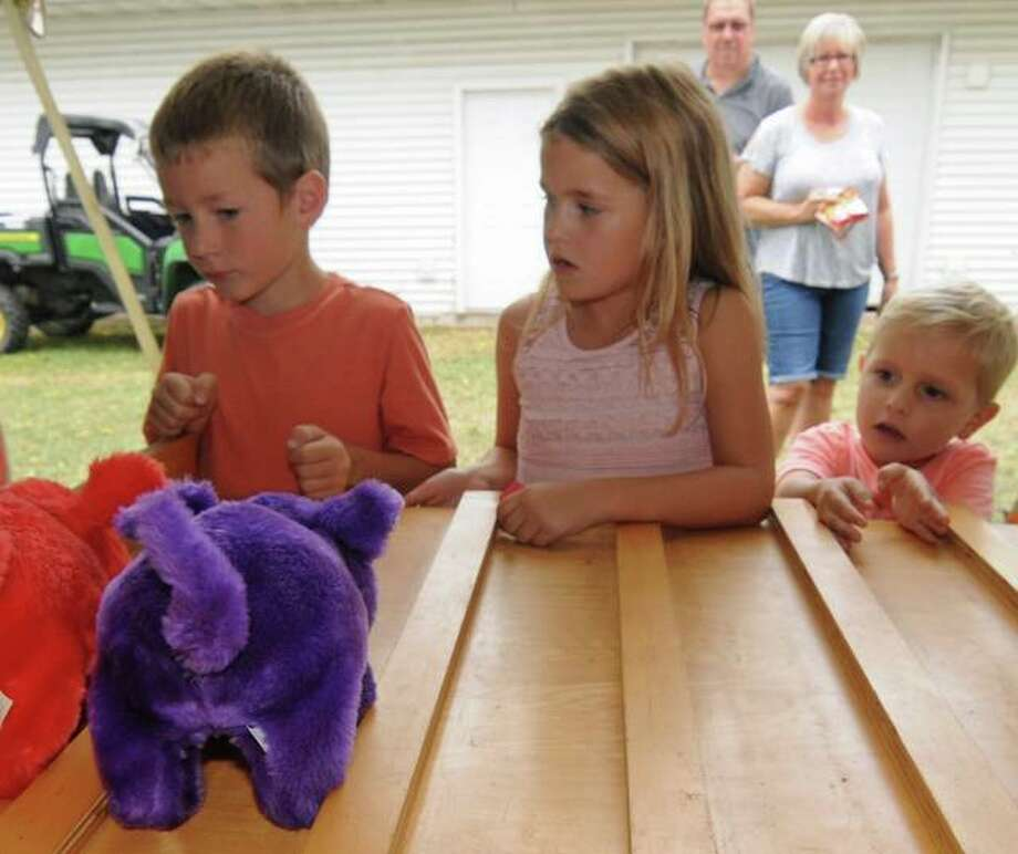London Knabe, 5, (from left), Mabel Pohlman, 6, and Patrick Pohlman, 4, watch the finish of a stuffed pig race during Sunday's Jerseyville Harvest Fest.