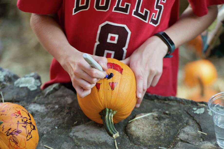 Children decorate pumpkins at Ambler Farm Day on Sunday, Sept. 22, 2019 in Wilton Connecticut. Photo: Bryan Haeffele / Hearst Connecticut Media / Wilton Bulletin