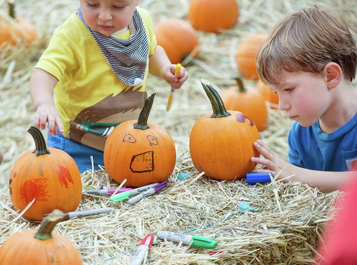 There will be pumpkins at next month's Ambler Farm Day, just no pumpkin patch.