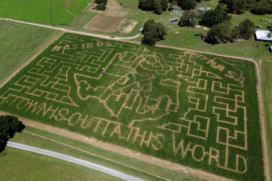 P-6 Farms is celebrating the Houston Astros' path to the World Series and the 50th anniversary of landing on the moon with its corn maze design.  >>> See  the top pumpkin patches ... Photo: Courtesy