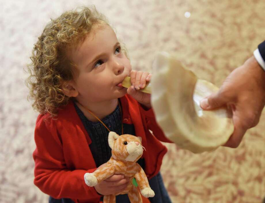 A little girl blows a shofar, an instrument typically made from a ram's horn that is blown ceremonially at Rosh Hashanah, which is Sept. 29-30 and Yom Kippur, which is Oct. 3. Temple B'nai Chaim will introduce a new prayer book for its High Holy Day family services. Photo: Tyler Sizemore / Hearst Connecticut Media / Greenwich Time