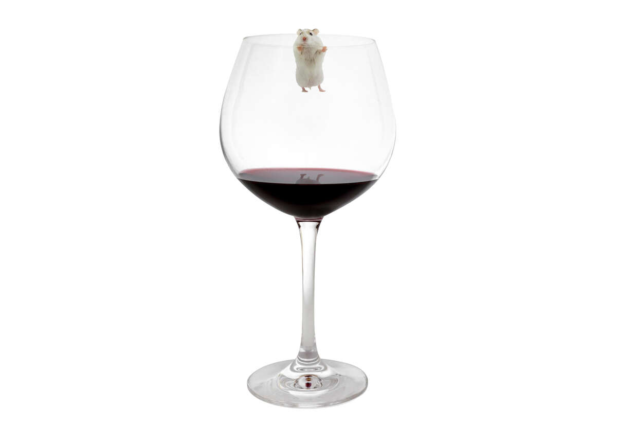 Vertical shot of a glass of red wine on white background.