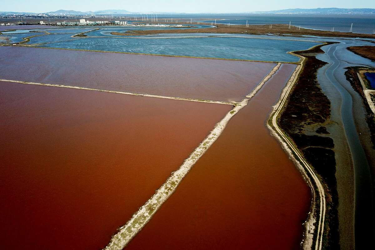 The Cargill salt ponds on Wednesday, March 13, 2019, in Redwood City, Calif. A federal judge on Monday ruled that a collection of salt ponds on the San Francisco Bay is subject to protections under the Clean Water Act - going against a previous decision by the Environmental Protection Agency that could have potentially paved the way for massive development on the site.