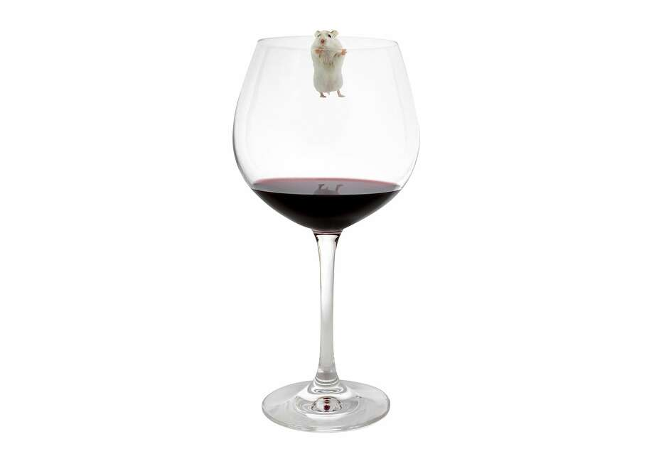 As much as 30% of the population may not be able to taste mouse — or mousiness, an off-flavor that can infect wines —�according to the Oxford Companion to Wine. Photo: The Chronicle Photo Illustration From IStockphoto Images, Getty Images/EyeEm