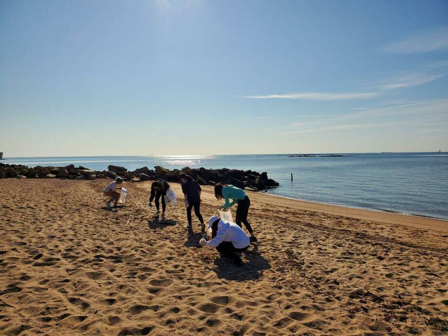 A group of Cheshire Academy students pick up garbage from the East Haven Town Beach during an event organized by Save The Sound. Photo: Contributed File Photo