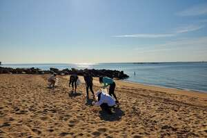 A group of Cheshire Academy students pick up garbage from the East Haven Town Beach during an event organized by Save The Sound.