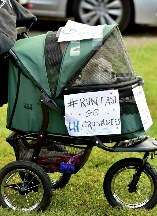 Milford, Connecticut -Tuesday, September 24, 2019: A cart holding a small dog is adorned with signs heralding the Lauralton Hall H.S. girls cross country team as the cross country teams of Lauralton Hall, Mercy H.S., Daniel Hand H.S., and Jonathan Law H.S. compete during a meet Tuesday at Eisenhower Park in Milford hosted by Jonathan Law H.S. Photo: Peter Hvizdak / Hearst Connecticut Media / New Haven Register
