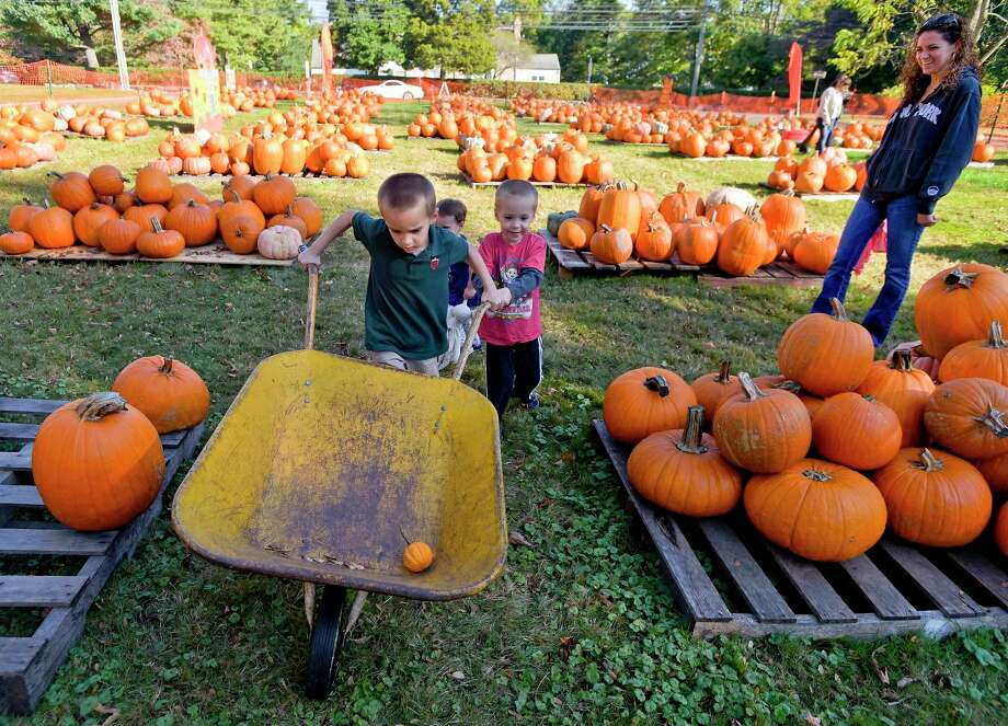 St. John's Lutheran Church Pumpkin Patch in Stamford benefits local charities. Photo: Matthew Brown / Hearst Connecticut Media File Photo / Stamford Advocate