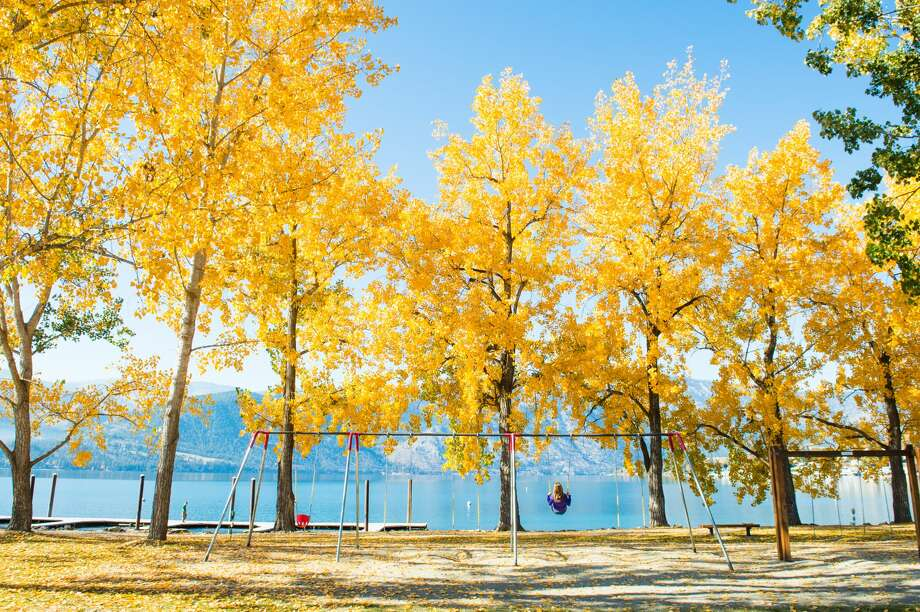 Lake Chelan hosts fall festivities. Photo: Shane Wilder/ Icicle TV, Courtesy Of Lake Chelan Chamber Of Commerce