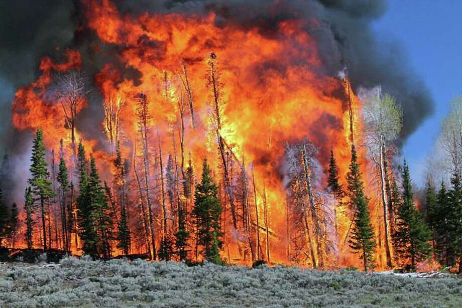 A high-intensity prescribed fire consumes trees on the Fishlake National Forest in Utah. Photo: USDA Forest Service Photo By Roger Ottmar, USDA Forest Service Pacific Wildland Fire Sciences Laboratory. / USDA Forest Service/Roger Ottmar