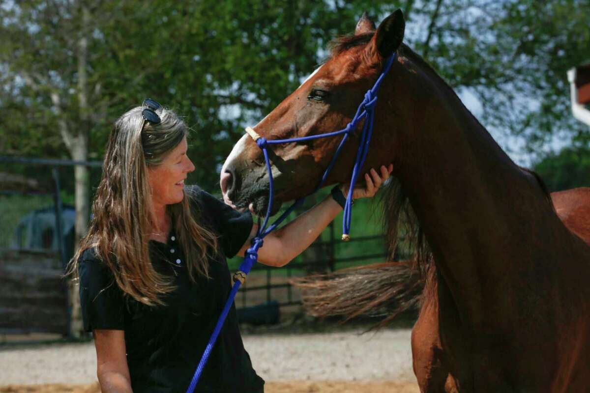 """Rebecca Williams, executive director of Habitat for Horses, an equine rescue, and protection sanctuary interacts with """"Pete"""" her first rescue Friday, Aug. 23, 2019, in Alvin."""