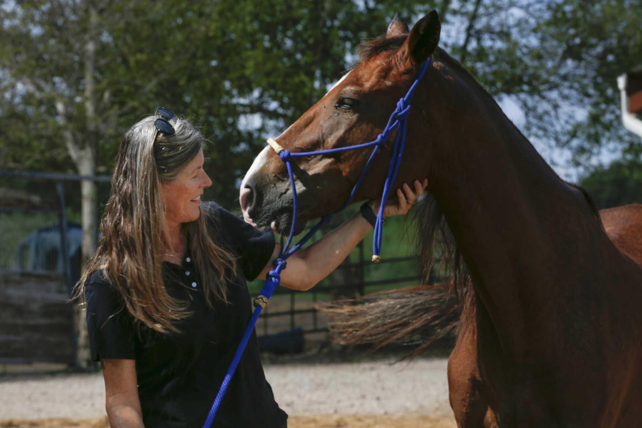 Rebecca Williams Advocates For Equine Rescue And Sanctuary Houstonchronicle Com