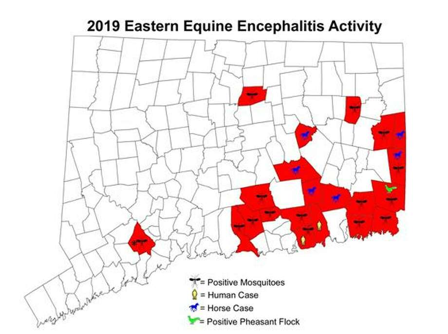 Although most of the positive tests for Eastern equine encephalitis are in eastern Connecticut, the presence of the mosquito-borne virus has been reported in Shelton. Photo: Contributed Photo / CAES / New Canaan Advertiser Contributed