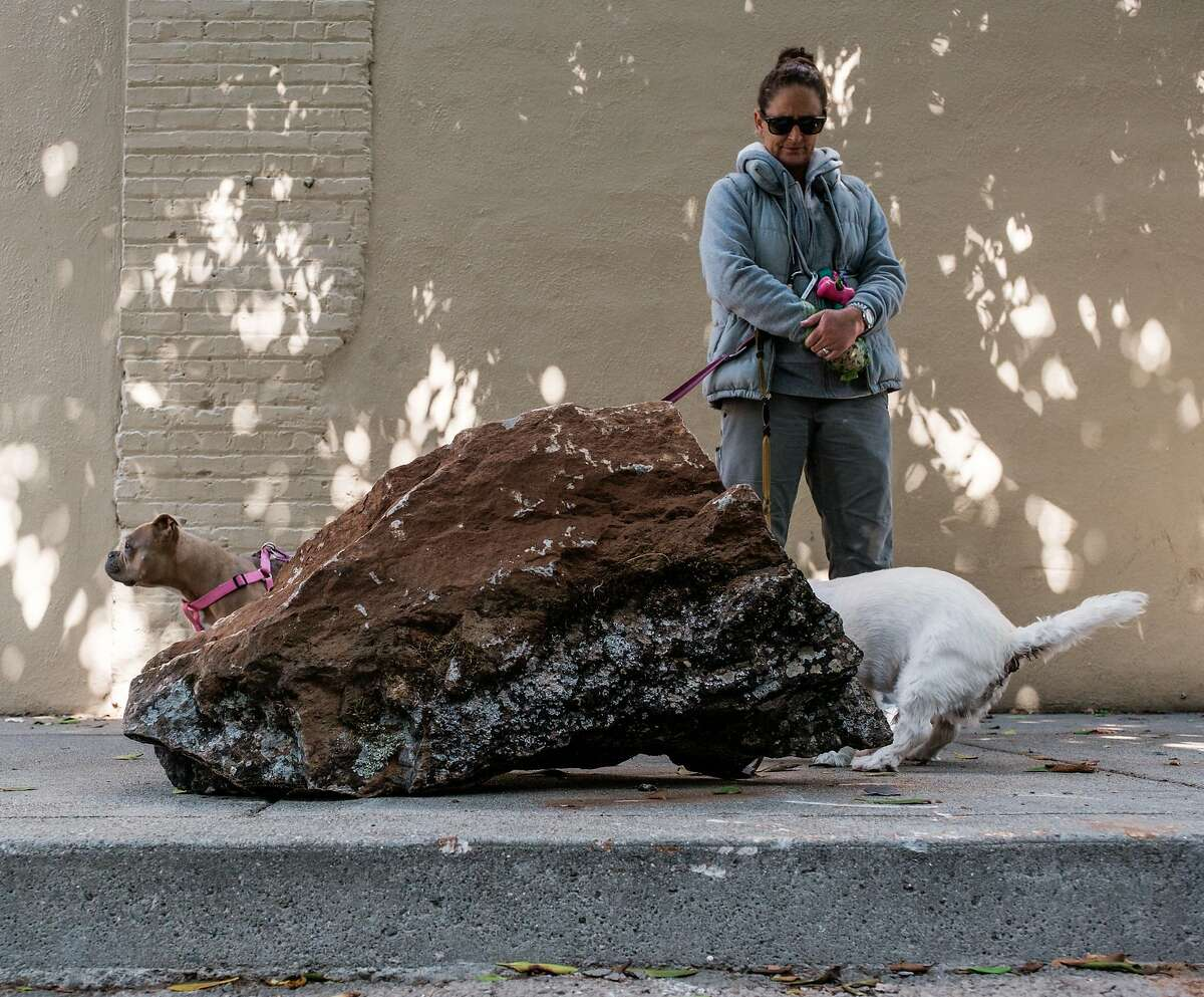 Beth Mosely, a dog walker, watches as her dog goes to the bathroom on the sidewalk near a boulder that is meant to deter homeless encampments in San Francisco, Calif. on Saturday, September 28, 2019.
