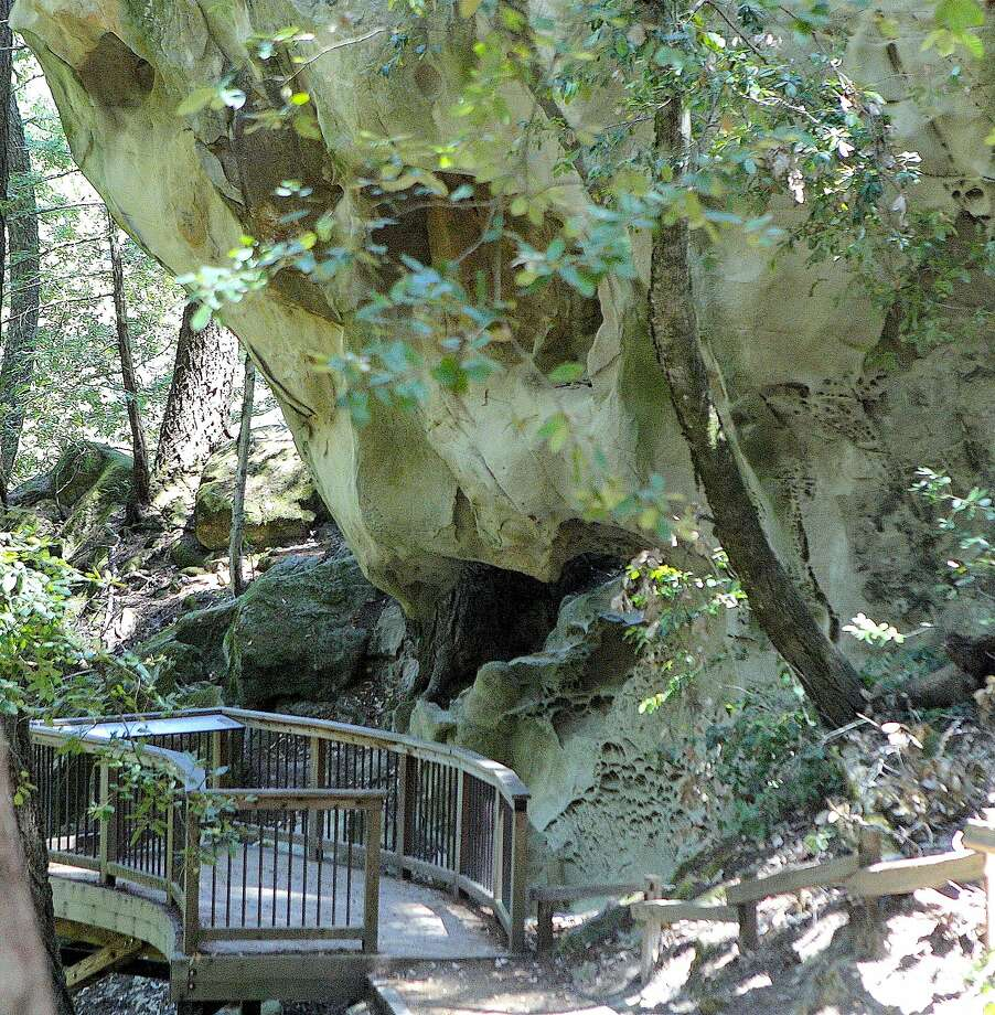 A trail in El Corte de Madera Creek Open Space Preserve leads to the cutoff spur to the Tafoni, a sandstone monolith with viewing deck on the slopes of a redwood canyon on the peninsula. Photo: Tom Stienstra / The Chronicle