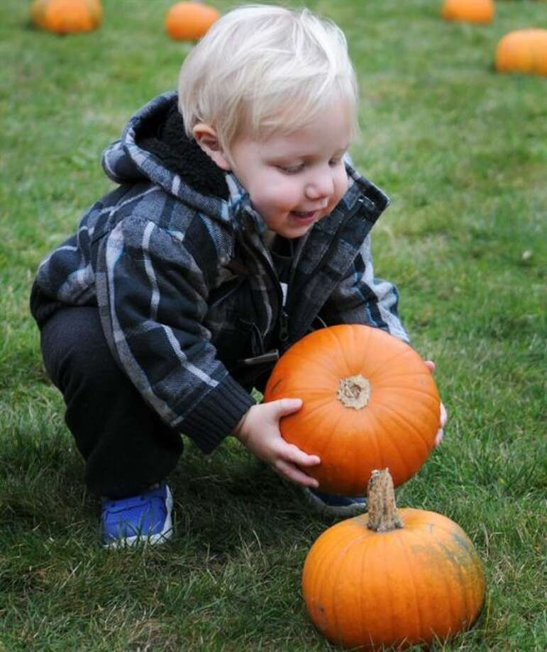 At many area locations, kids will have the chance to pick their own perfect pumpkin to carve just in time for Halloween. (Pioneer file photo)