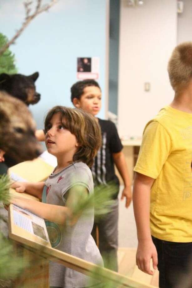 A student from Brookside Elementary School looks at the animal exhibits in Card Wildlife Education Center. Third-graders will begin their journey there before going on to use other resources in the community to complete the arts and literacy project. (Pioneer photo/ Catherine Sweeney)