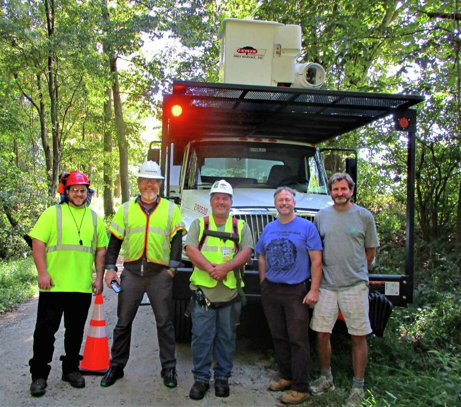 From left, Rob Molito, Eversource groundsman, David Doyle, arborist, Scott Hall, I.S.A. certified arborist, Jack Swatt, president of CT Chapter of the American Chestnut Foundation, and Richard Wilhem, Roxbury resident who discovered the rare chestnut tree. Photo: Jo Ann Jaacks / For Hearst CT Media
