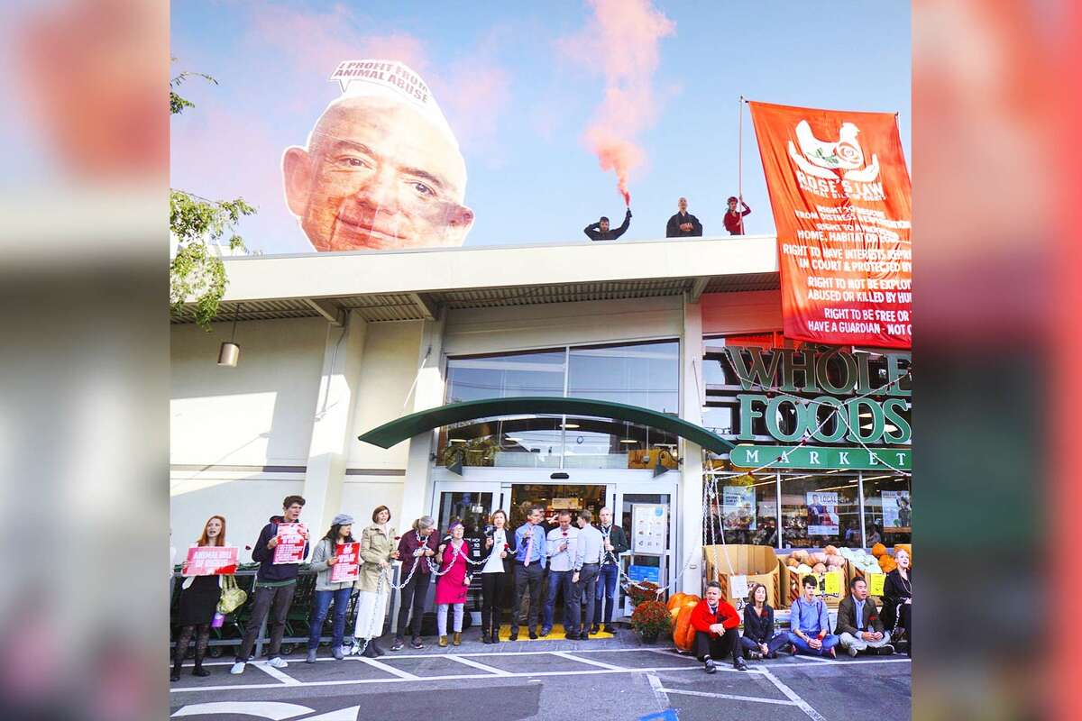 In a photo provided by animal rights activists with Direct Action Everywhere, the group is shown shutting down a Whole Foods store on 24th Street in San Francisco's Noe Valley. The protests are asking for a response from Amazon CEO Jeff Bezos regarding the undercover investigations the group claims have revealed cruel conditions at farms selling products marketed as