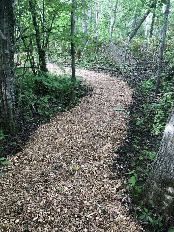 A new walking trail has been installed in the Betsie River Day Use Park, on the border of Thompsonville in Weldon Township. (Courtesy photo)