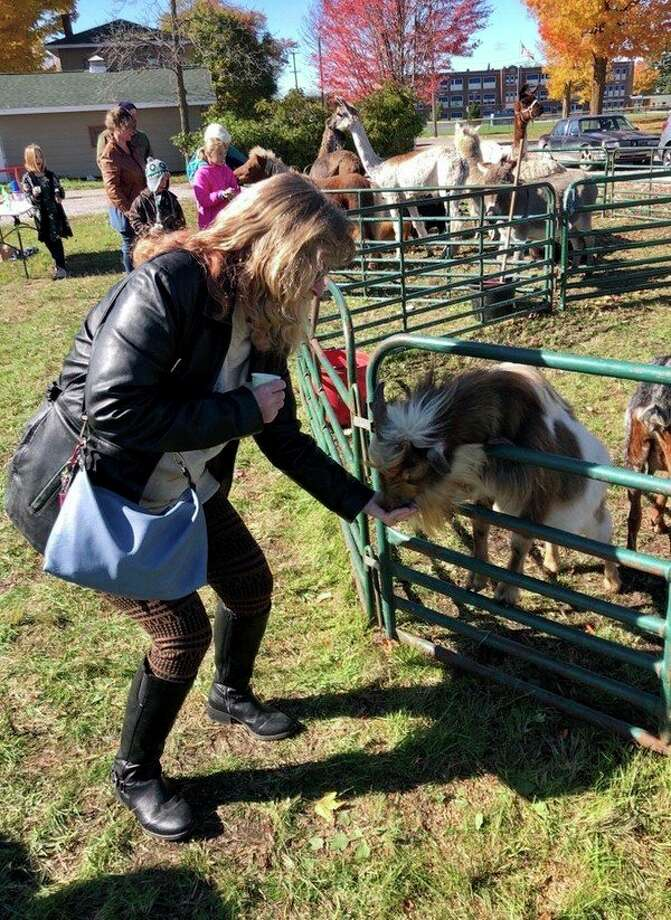 As well as a petting zoo, guests will have the opportunity to feed the animals, at no cost. This event is part ofMOSAC's Free Sober Family Social Events.(Courtesy photo)