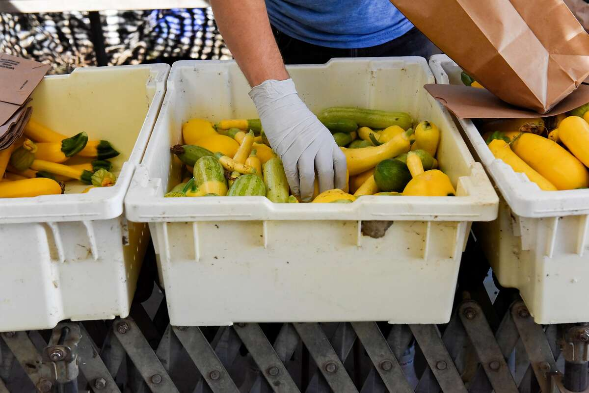 Cameron Ottens prepare CSA boxes at Eatwell Farm in Dixon, Calif., on September 17, 2019.