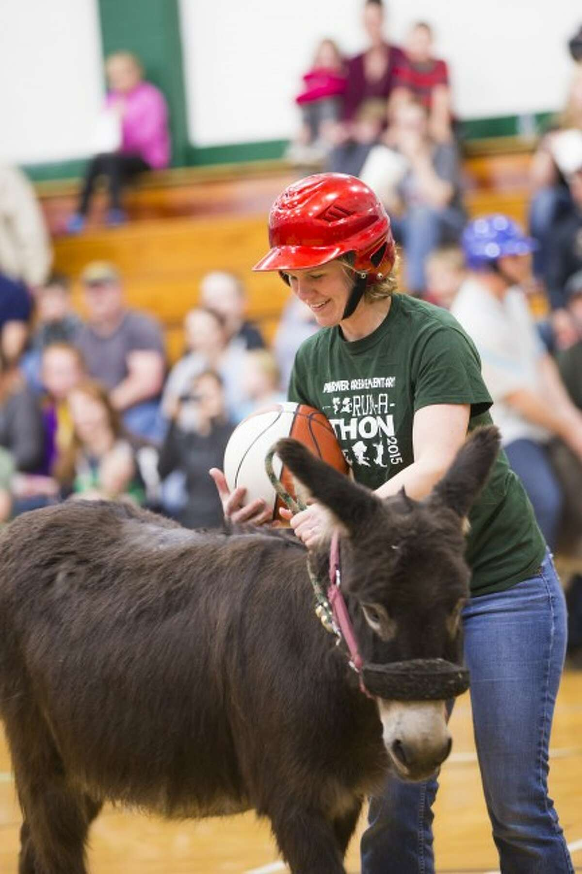 SPORTING FUN: First-grade teacher Tiffany Lindquist takes control of the ball and attempts to climb onto her donkey.