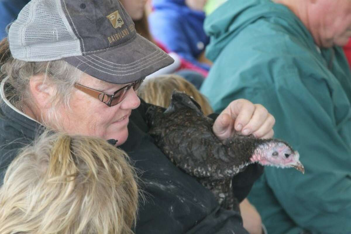 Diane Cole holds her turkey during the Blessing of the Animals on Sunday at Circle Rocking S Children's Farm in Free Soil. (Michelle Graves/News Advocate)