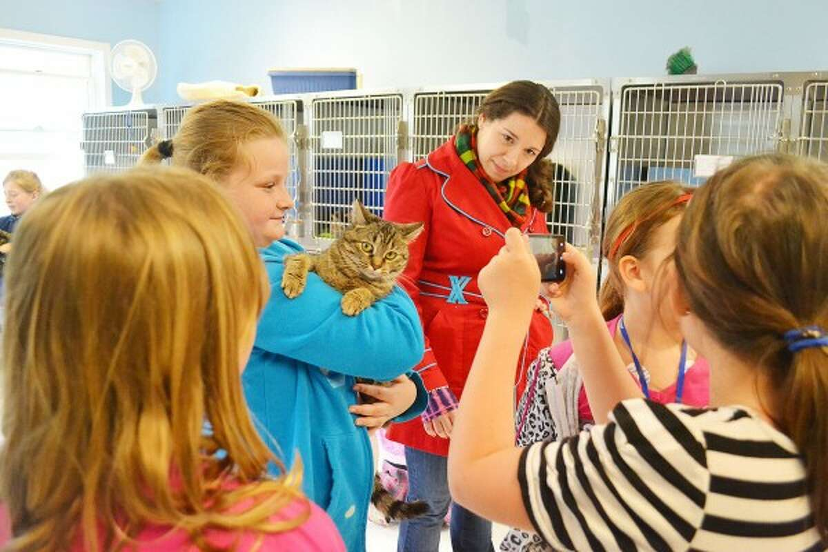 Girls from McAnn Bradford's third grade class at Kaleva Norman Dickson School visited the animals and made a large donation of laundry items, food and toys at Homeward Bound Animal Shelter in 2013. When the class recieved their newspapers every week for NIE, their favorite page was the weekly