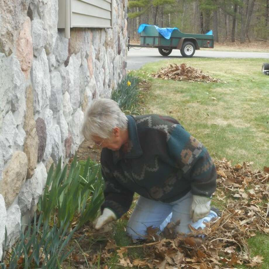 Christine Hindman pulls leaves out from flowers at the Epworth United Methodist Church in Brethren on Saturday. (Courtesy photo)