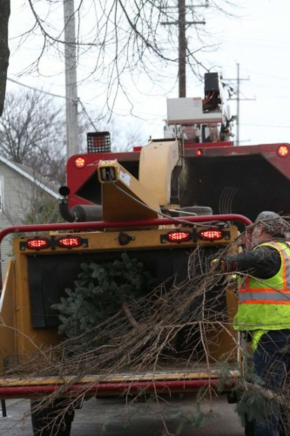 Branches from the tree were trimmed off the tree and put into a woodchipper before it was transported to the Manistee Eagles Club in preparation for the parade. (Sean Bradley/News Advocate)