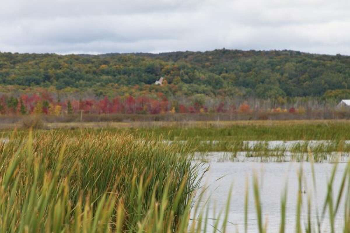 Fall foliage can be seen all around Manistee and Benzie counties. Some areas in Michigan saw a delay in leaf colors, and others had muted hues. (Michelle Graves/News Advocate)
