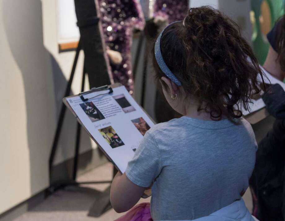 The Bruce Museum in Greenwich is hosting a Fall Family Day on October 27. Photo: Carola Muis / Contributed Photo / Carola Muis