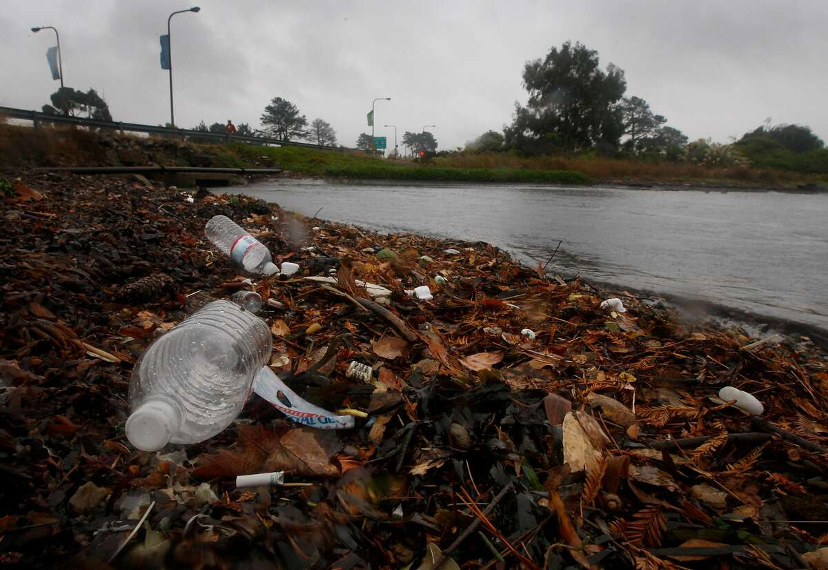 Trash gathers on the shoreline of San Francisco Bay at the Berkeley Marina in Berkeley, Calif., on Tuesday, Oct. 13, 2009. Much of the trash flows through storm drains and wind up along the bay's shore.