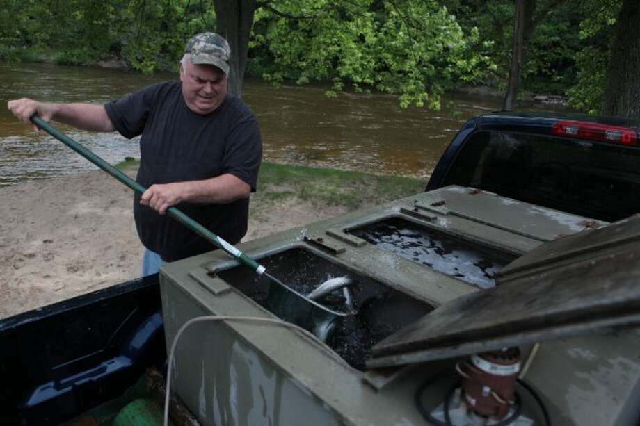 Bob Baldwin's Big Rapids-based commercial fish farming company, Aqua Springs, provides the fish for the project each year.